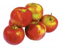 Jablká Idared