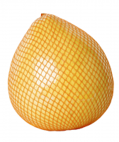 Pomelo