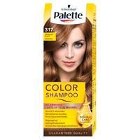 Palette Color Shampoo 317 orieškovoplavý 50 ml